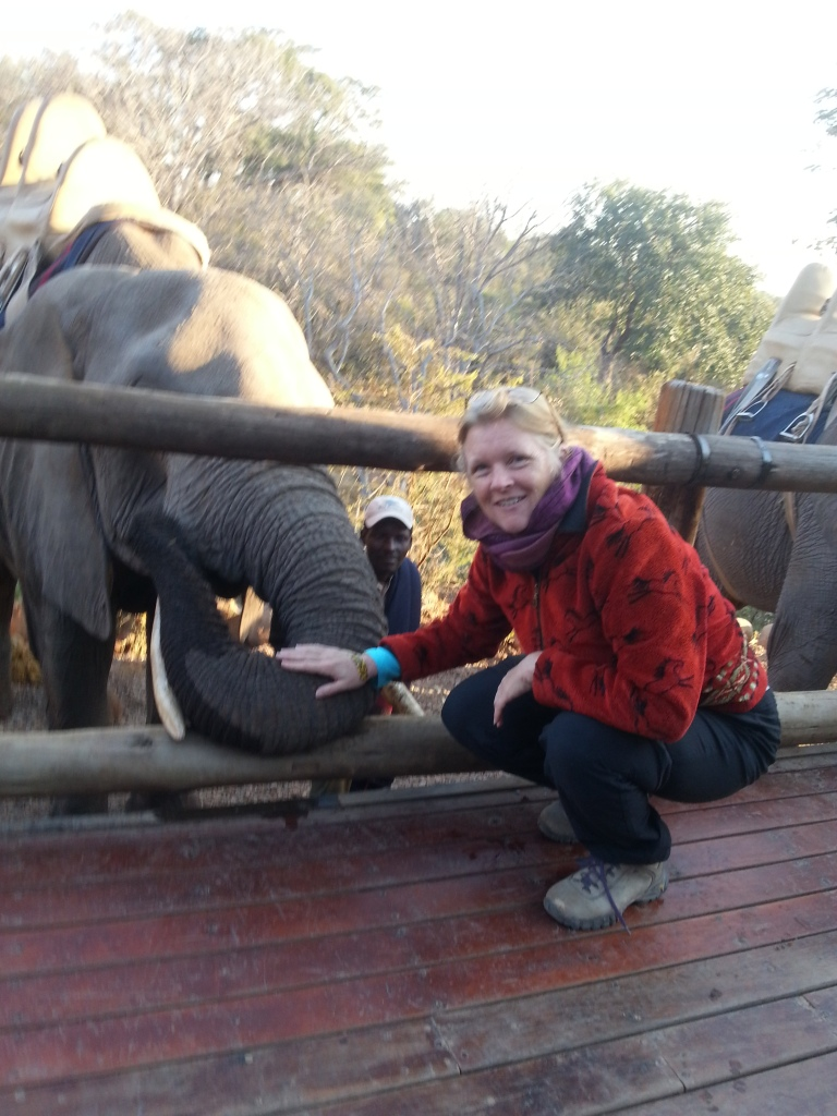 Making friends with an African elephant in Zimbabwe.