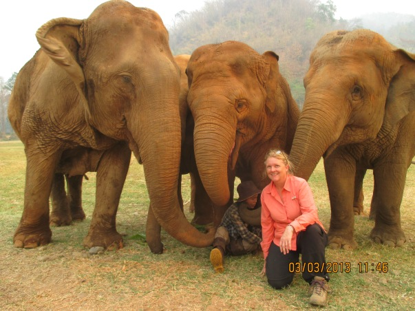 Lex is sitting behind me feeding the elephants small fruits. The elephants are touching her all over with their trunks and caressing her.