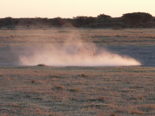 Southern Africa is a dusty, sandy place.