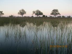 15 Botswana (122)