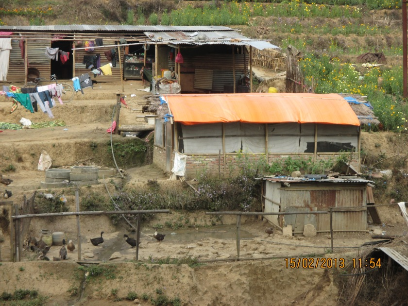 Typical farmer in Kathmandu
